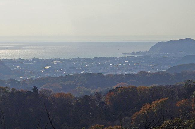 大平山山頂14-3