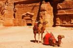 ペトラ遺跡 ヨルダン1409