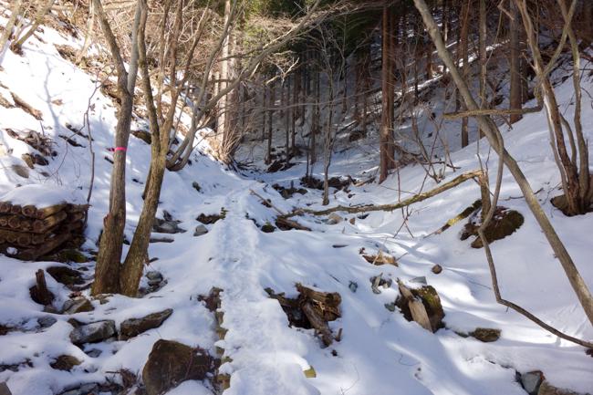 西丹沢大室山の冬-7