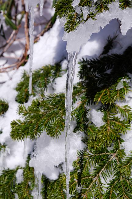 八ヶ岳北横岳冬-11