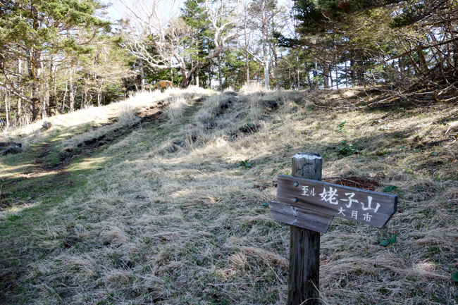 雁ヶ腹摺山〜姥子山-22