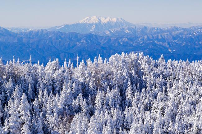 八ヶ岳北横岳冬-23