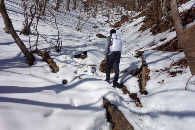 西丹沢大室山の冬-8