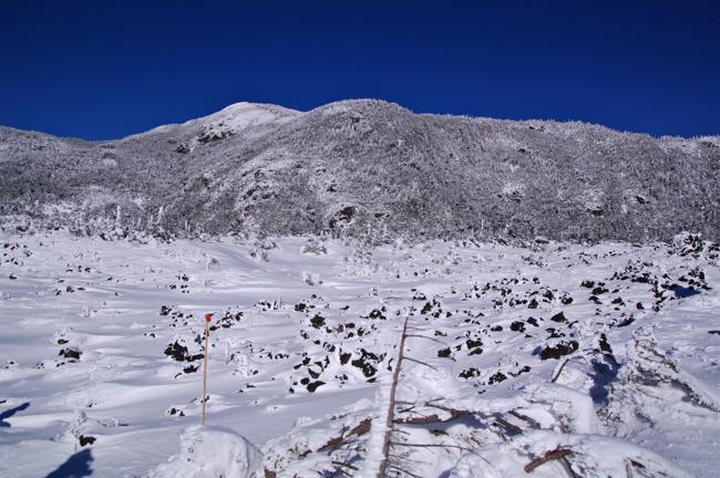 八ヶ岳北横岳冬-3