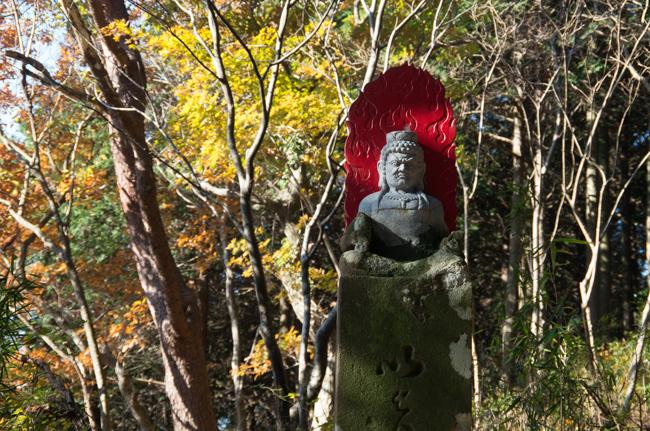 秦野弘法山から大山-21