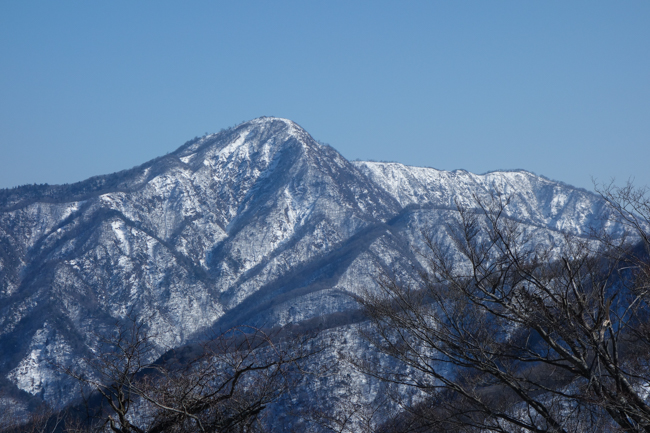 西丹沢大室山の冬-31