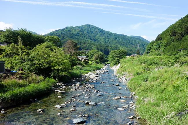 菰釣山のブナ2016-2