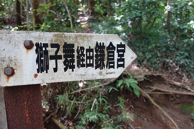 天園ハイキングコース0630