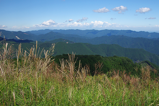 棒ノ嶺・棒ノ折山山頂1409