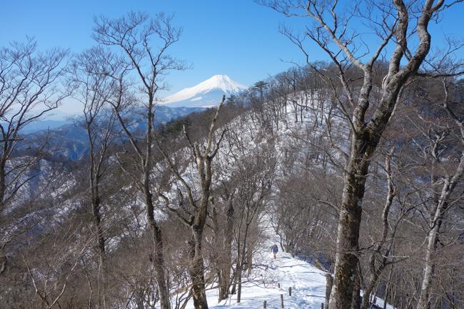 西丹沢大室山の冬-19