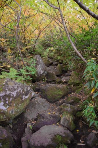 妙高山1509-5
