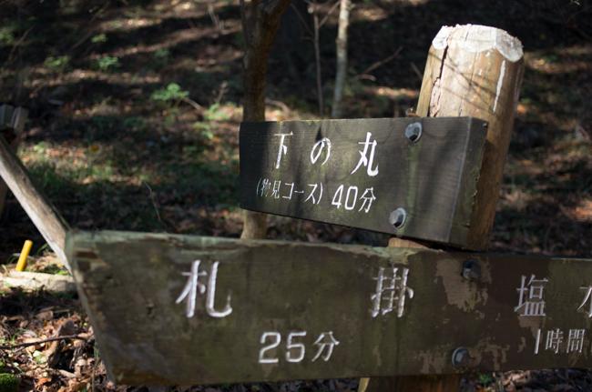 丹沢長尾尾根-11