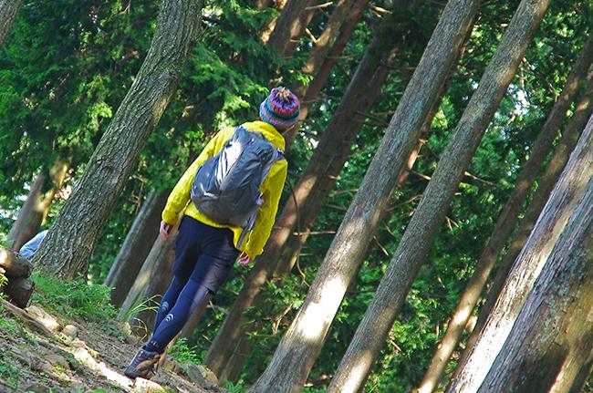 高水三山登山道2 1409