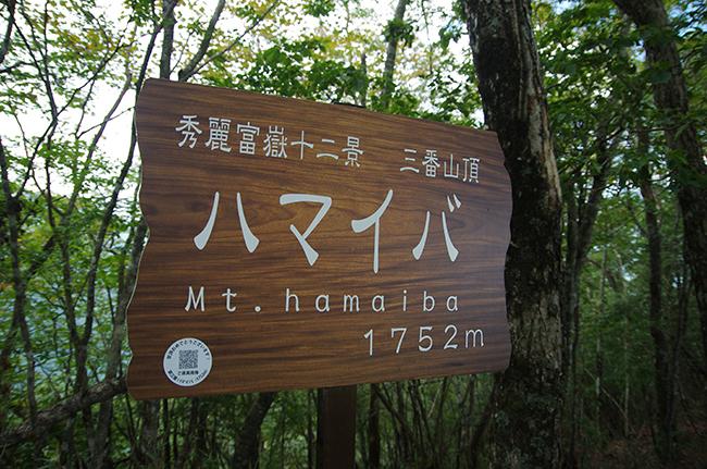 ハマイバ丸山頂1409