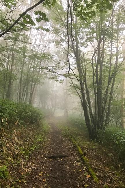 木曽駒〜空木岳縦走テント-45