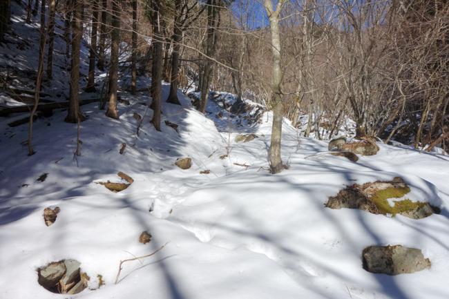 西丹沢大室山の冬-3