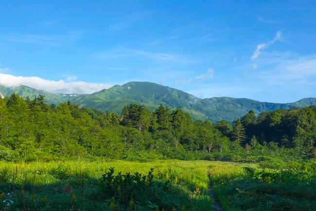 朝日岳_雪倉岳190811-2