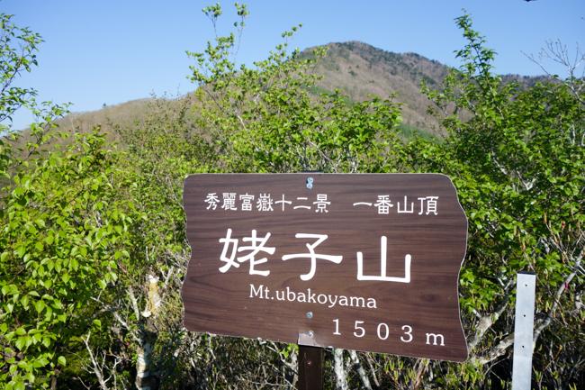 雁ヶ腹摺山〜姥子山-11