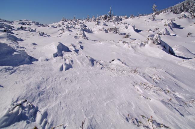 八ヶ岳北横岳冬-6