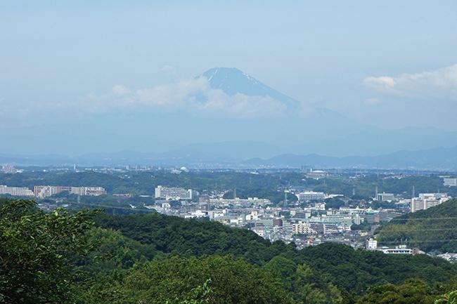 円海山ハイキング0630-4