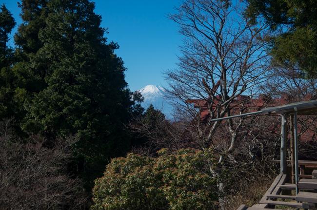 秦野弘法山から大山-33