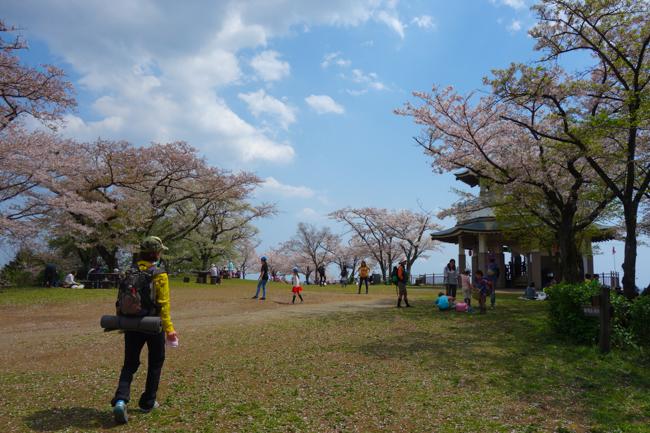 秦野弘法山の桜2017-22