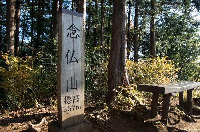 秦野弘法山から大山-18