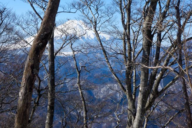 西丹沢大室山の冬-10