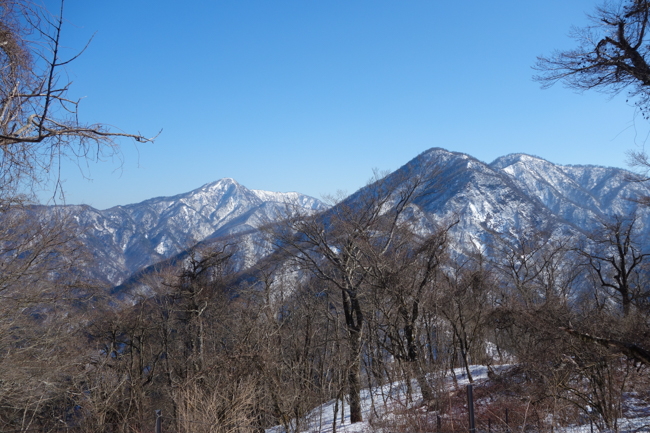 西丹沢大室山の冬-30
