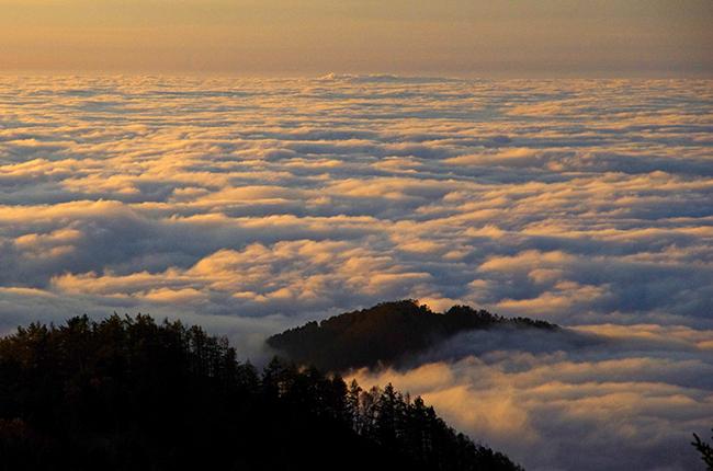 雲取山 雲海-3
