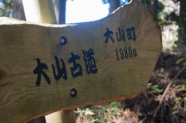 秦野弘法山から大山-22