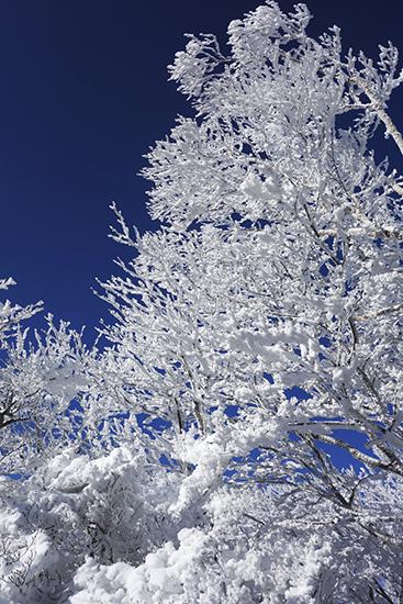 赤城山冬15-17