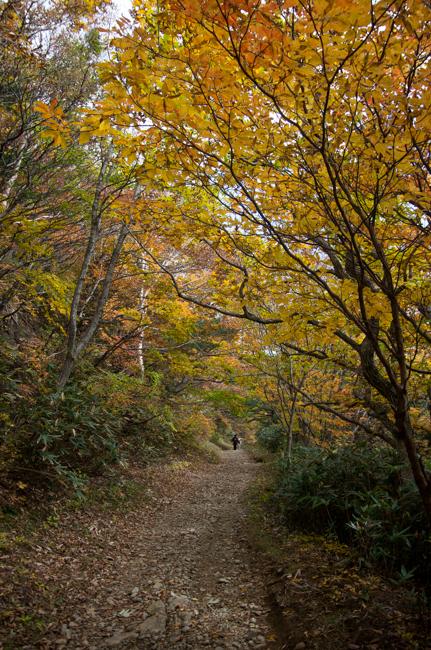 安達太良山紅葉10月-41