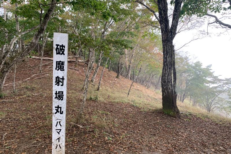 小金沢連嶺トレラン-12