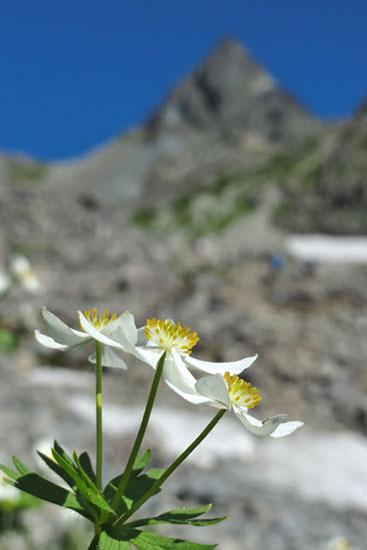 槍ヶ岳登山-25