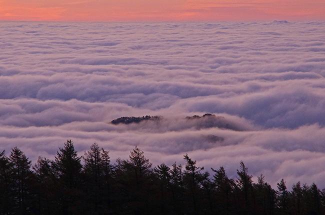 雲取山 雲海-2
