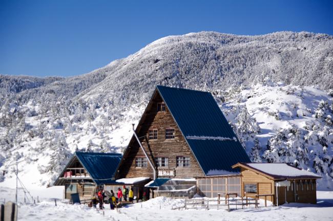 八ヶ岳北横岳冬-32