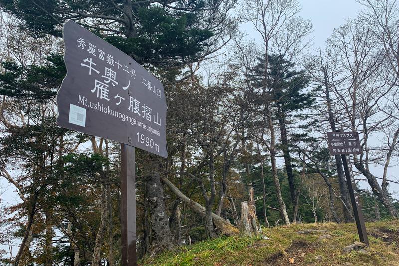 小金沢連嶺トレラン-7