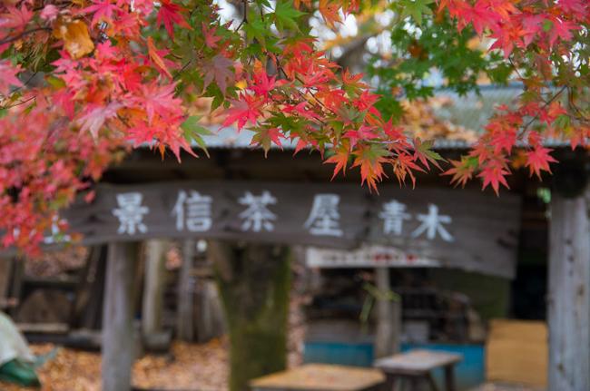 紅葉の高尾山〜陣馬山縦走(+RUN)   2015年11月