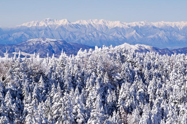 八ヶ岳北横岳冬-16