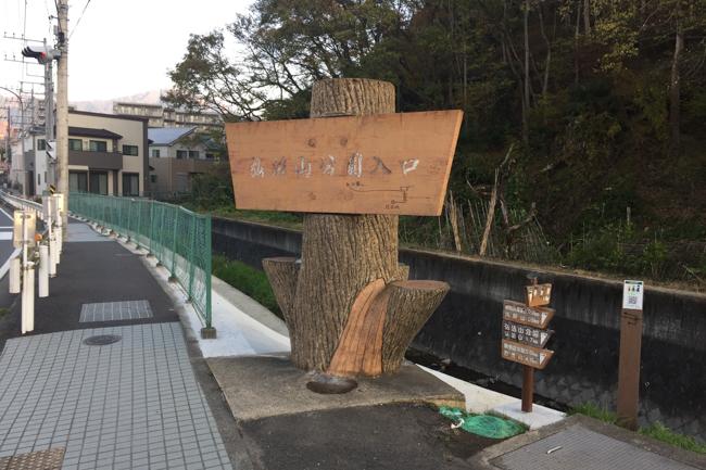 秦野弘法山から大山-3