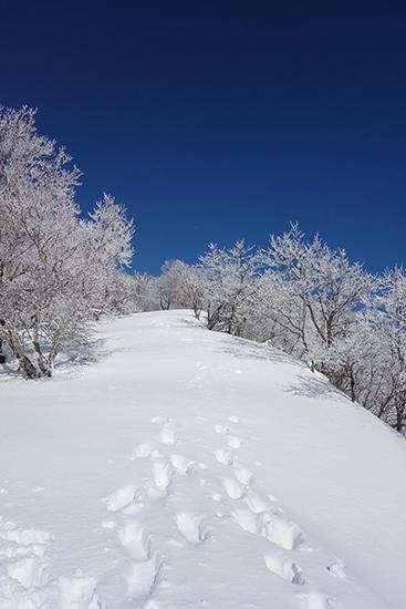 赤城山冬15-41