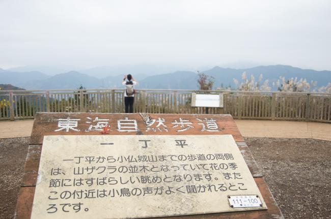 高尾山〜陣馬山縦走2015紅葉-10