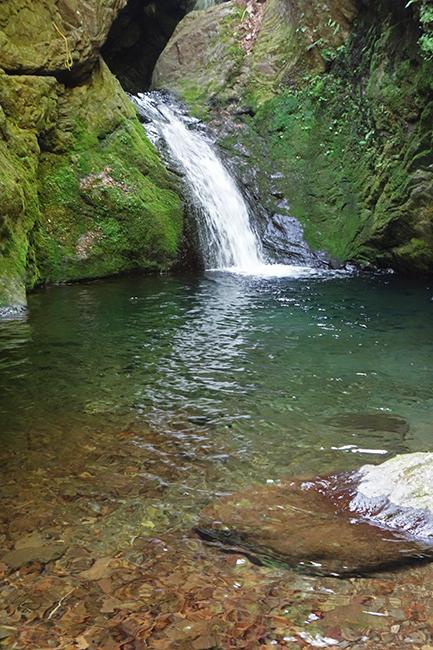 奥多摩で新緑と滝を巡る 海沢探勝路~大岳山~御岳山