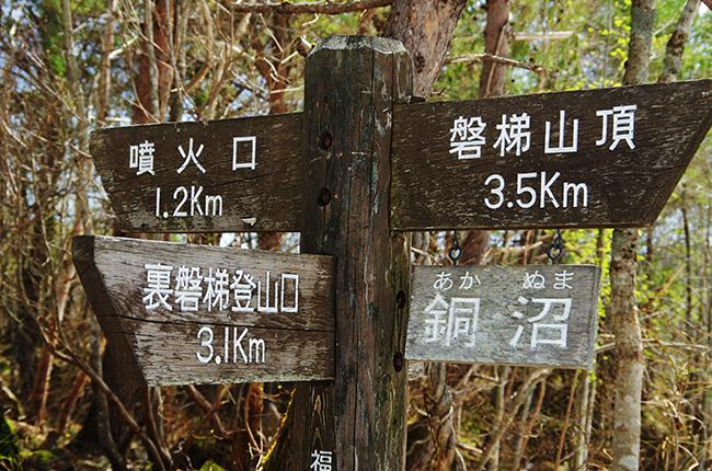 裏磐梯登山道火口分岐1505