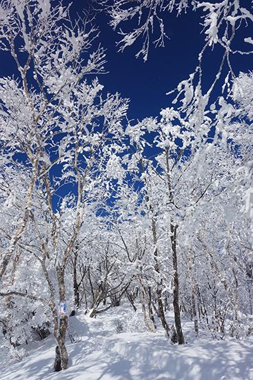 赤城山冬15-35