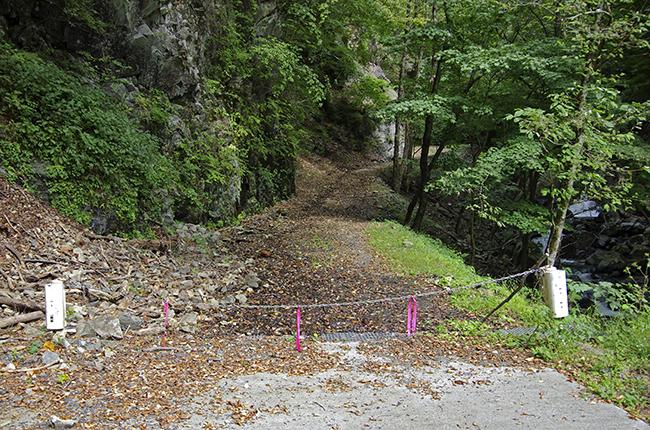 ヨモギ尾根入口1410