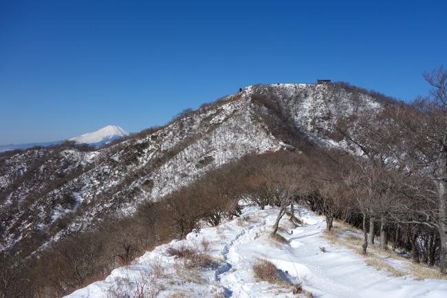 首都圏大雪後は丹沢へ 積雪の塔ノ岳(政次郎尾根〜表尾根〜天神尾根)周回コース