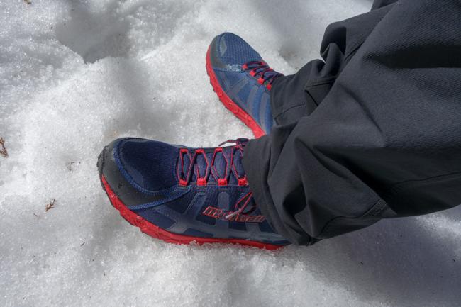 西丹沢大室山の冬-6