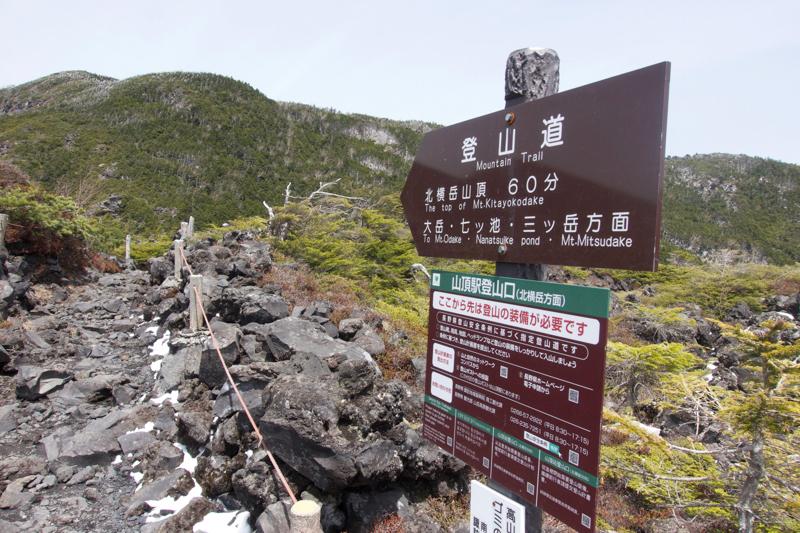 縞枯山〜北横岳-41